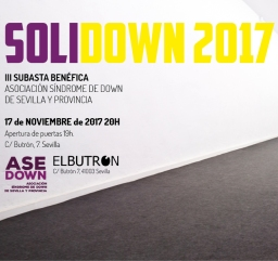 SOLIDOWN 2017